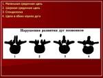 2.an_.slayd13.jpg
