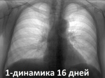 1-1.13.04.21.jpg