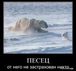 1295122567_demotivatori_53.jpg
