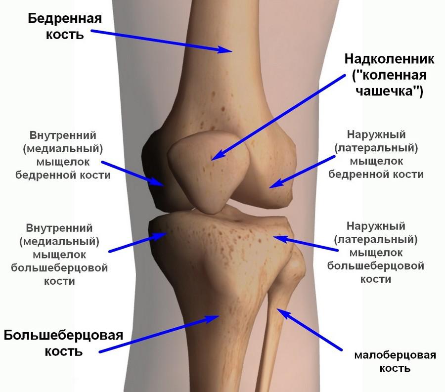 Анэхогенное образование с латеральной стороны коленного сустава артрозкривого плечевого сустава